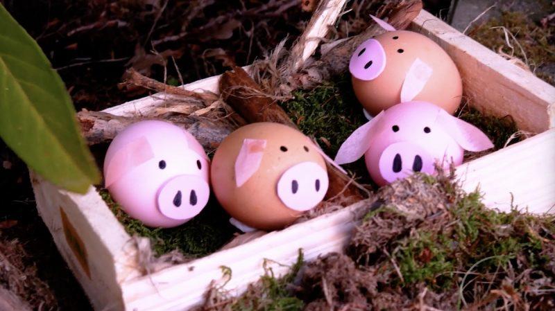 Porquinhos de ovos coloridos