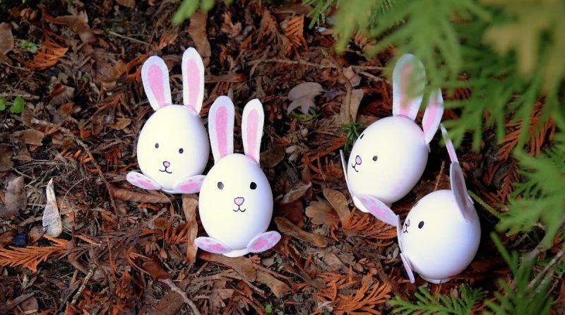 Ovinhos em formato de coelho prontos