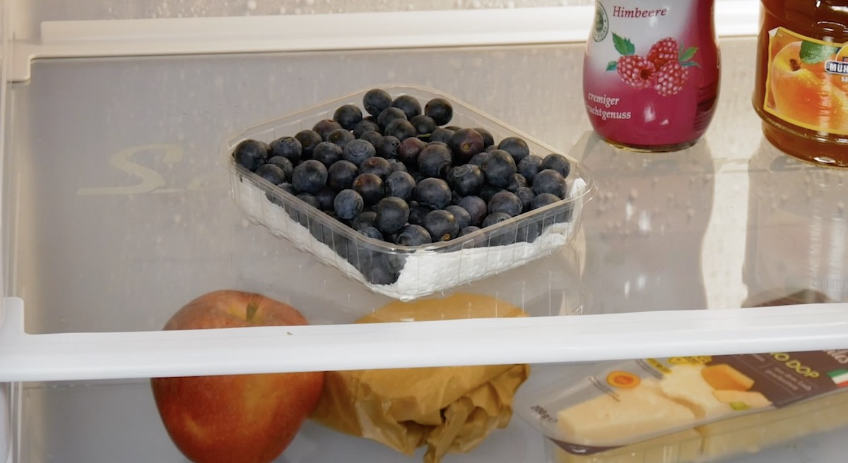 mirtilos na geladeira