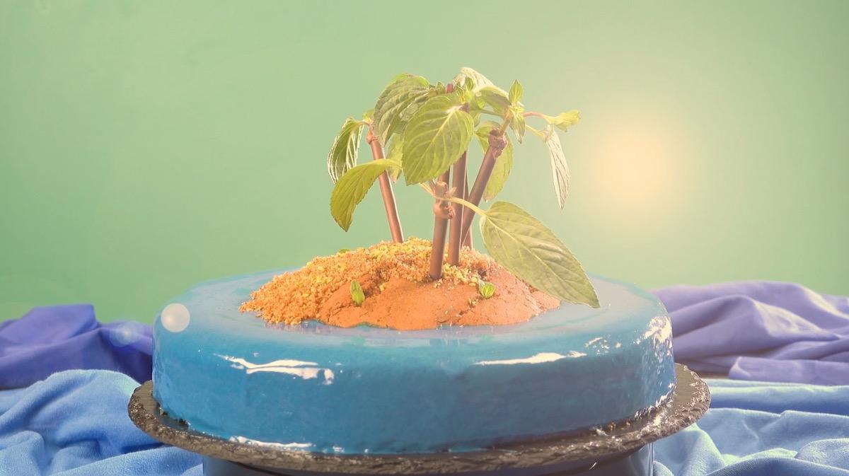 bolo ilha
