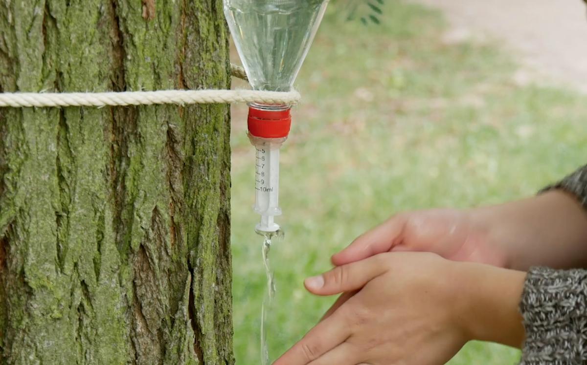 Dicas de acampamento com garrafa plástica