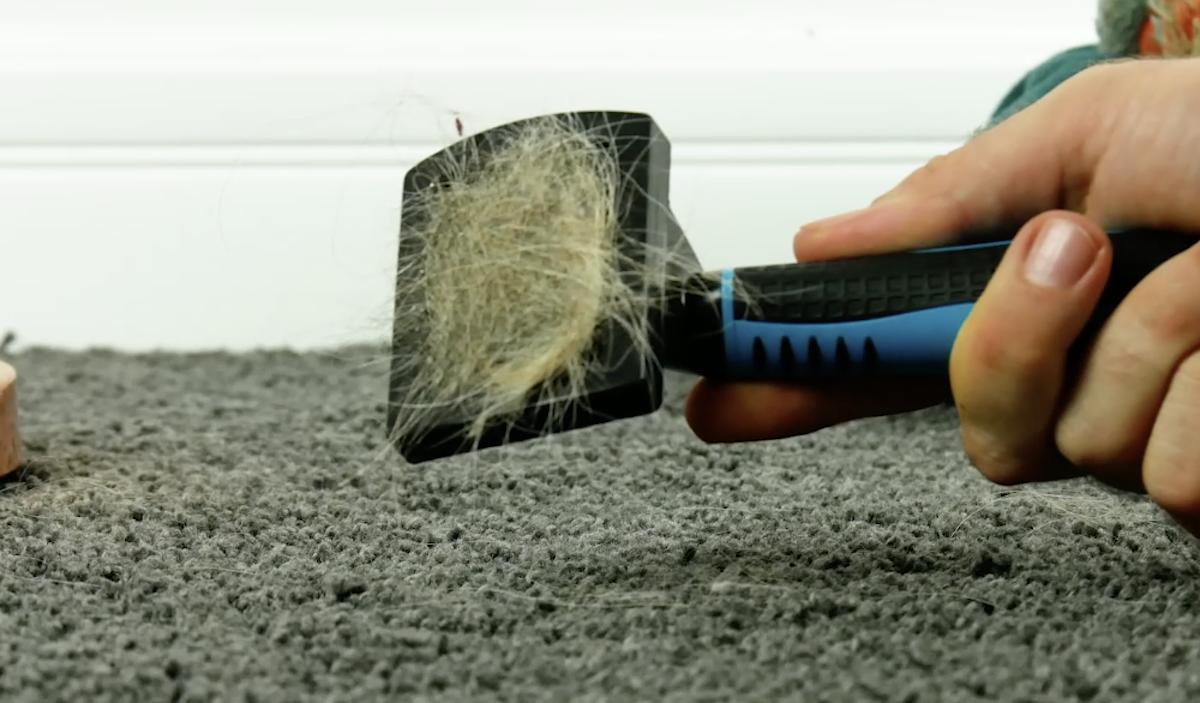 Tirar pelos de bichos de estimação do tapete
