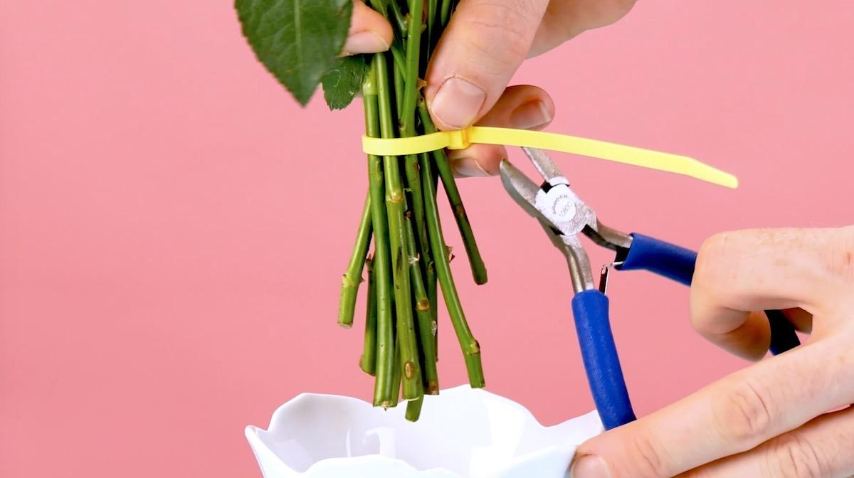 Arranger un bouquet avec un serre-câble