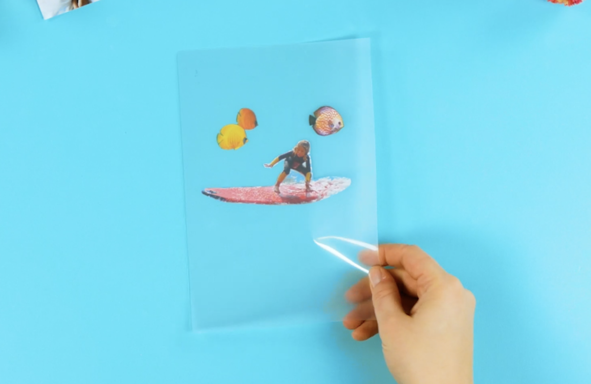 coloque as fotos dentro do plástico dobrado