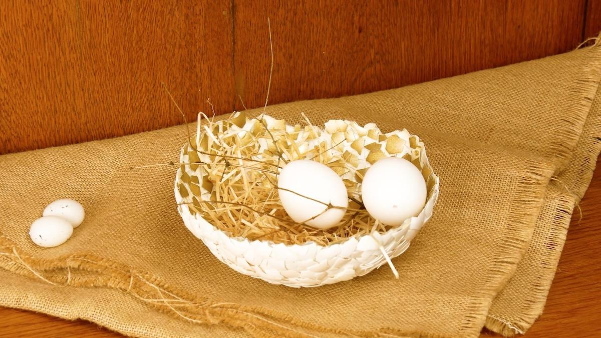 tigela de cascas de ovos
