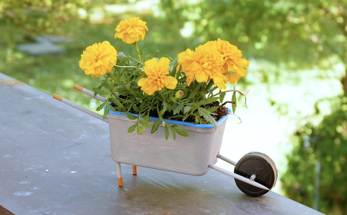 preencha com terra e flores