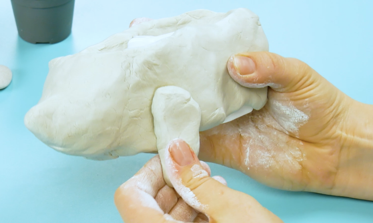 modele o corpo do ouriço