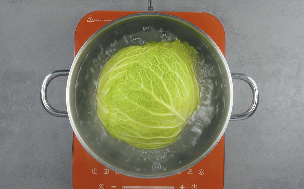 cozinhe o repolho