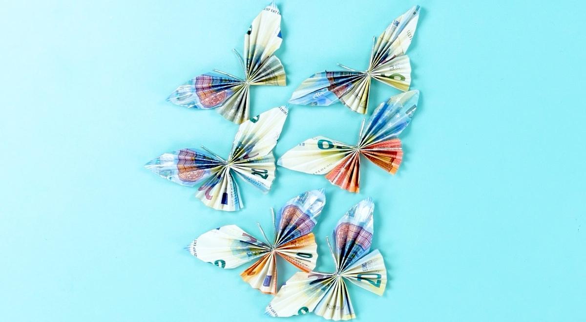 borboletas de dinheiro